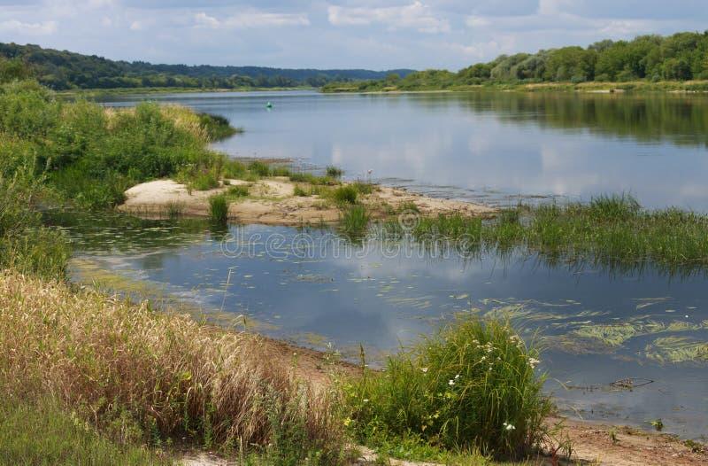 A paisagem ensolarada do verão no rio fotos de stock