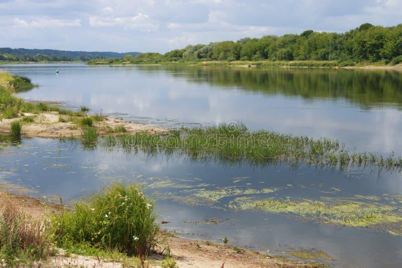 A paisagem ensolarada do verão no rio imagens de stock royalty free