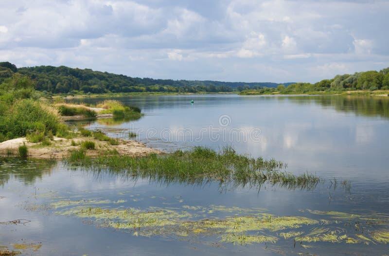 A paisagem ensolarada do verão no rio fotografia de stock