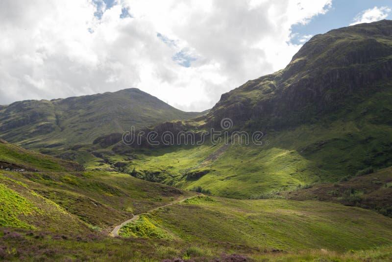 Download Montanhas escocesas foto de stock. Imagem de mamífero - 29832580