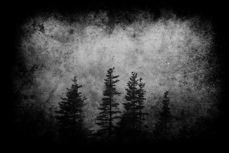 Paisagem escura com a floresta nevoenta na noite e em texturas sujas imagens de stock