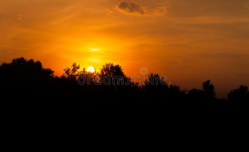 Paisagem escura da noite do conto de fadas bonito com o sol e o céu alaranjados e vermelhos com nuvens e a silhueta preta das árv fotografia de stock