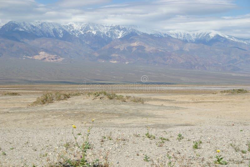 Paisagem estéril do deserto de Death Valley fotos de stock royalty free