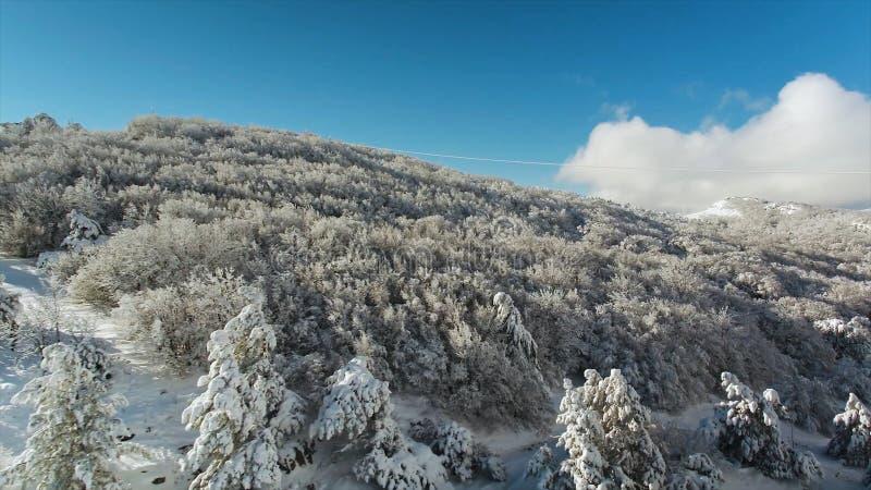 Paisagem fabulosa, montanhas e floresta do inverno cobertas com a neve no fundo brilhante do céu azul tiro Penhasco íngreme com fotos de stock royalty free