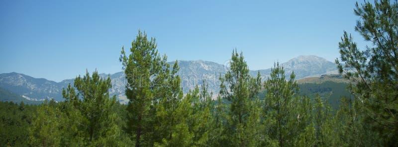 Paisagem fantástica da floresta e da montanha Viagem, turismo, conceito das férias de verão fotos de stock royalty free