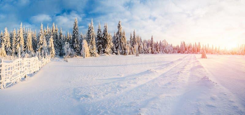 Paisagem fantástica do inverno, estrada, algo que conduz nas montanhas Dia ensolarado gelado nas montanhas Em imagem de stock royalty free