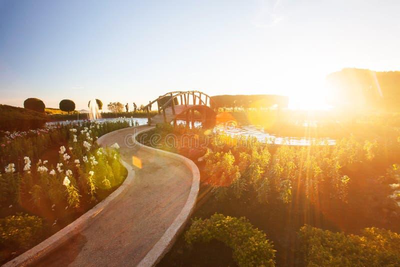 Paisagem fantástica do jardim tropical com a fonte no por do sol, ajuste brilhante do sol com o alargamento bonito da lente, turi foto de stock royalty free