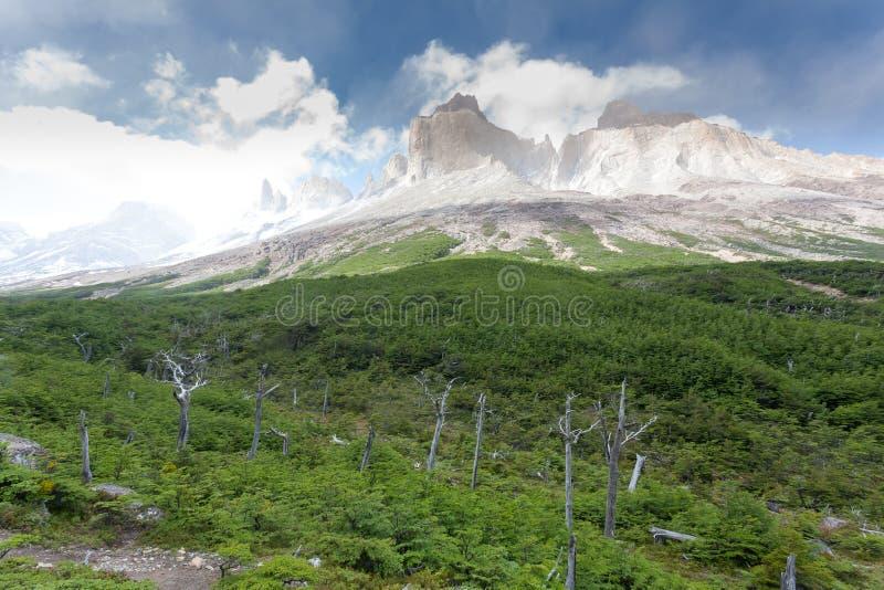 Paisagem francesa do vale, Torres del Paine, o Chile foto de stock royalty free