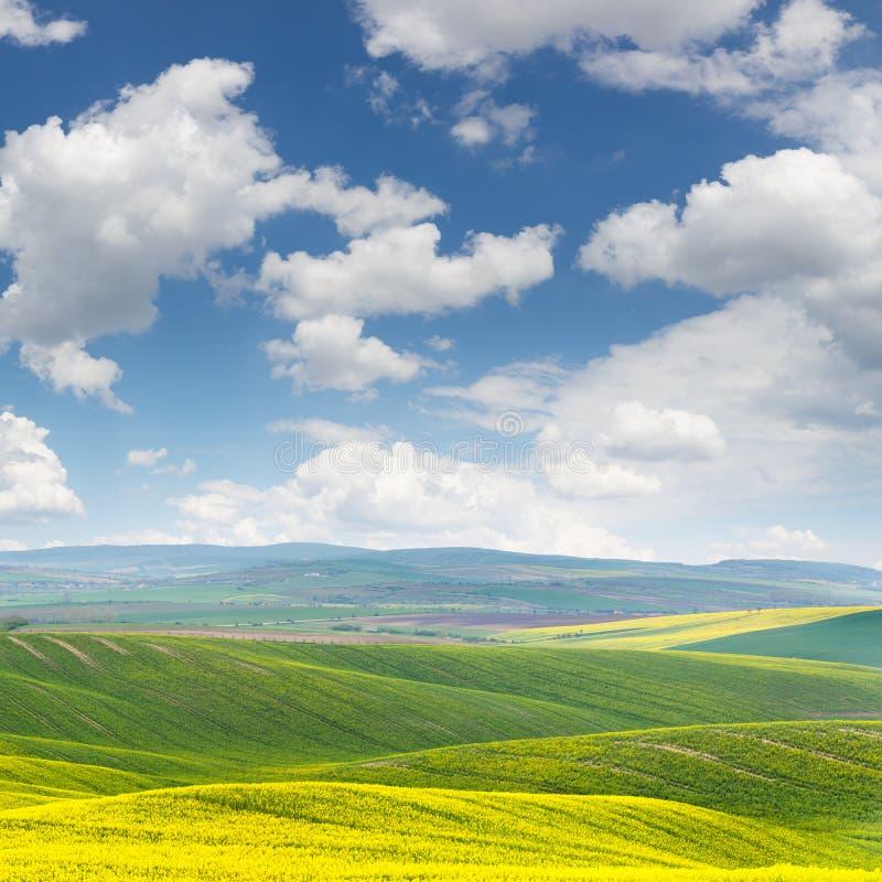 Paisagem fresca da mola de campos coloridos e de wi bonitos dos montes imagens de stock