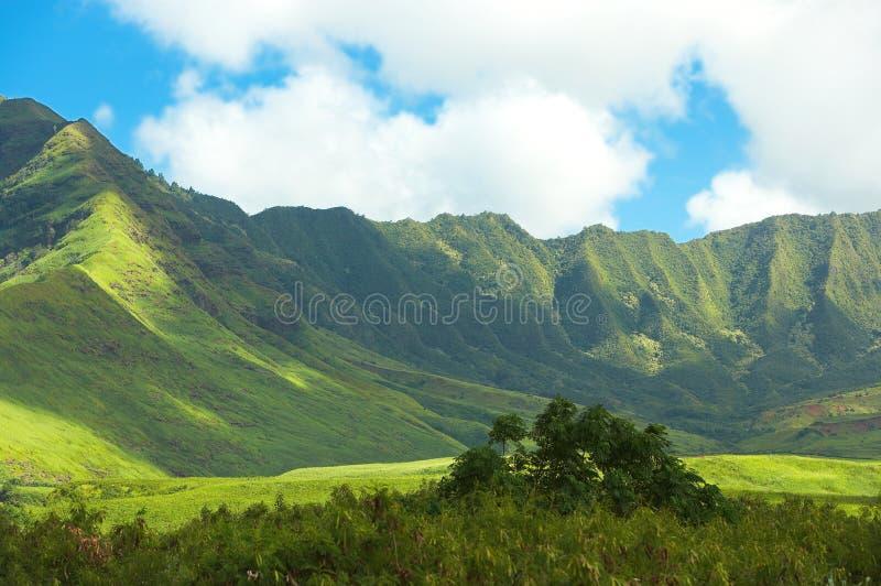Paisagem havaiana foto de stock royalty free