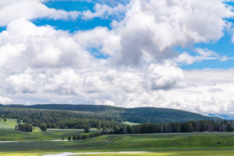 A paisagem Hayden Valley no parque nacional de Yellowstone que escarrancha o Yellowstone River cai imagens de stock