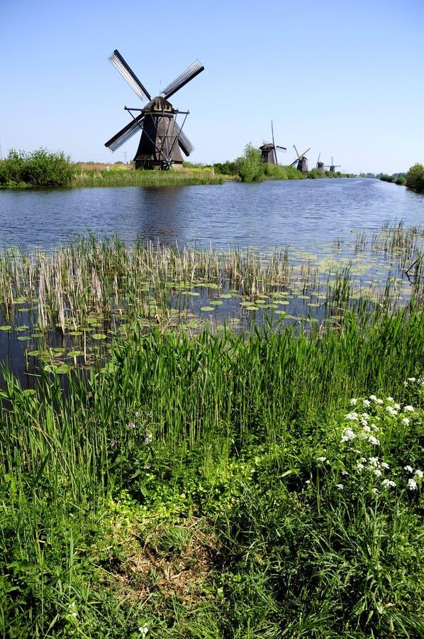 Paisagem holandesa fotografia de stock
