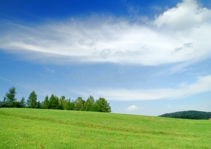 Paisagem idílico, ideia de campos verdes e céu azul imagens de stock royalty free