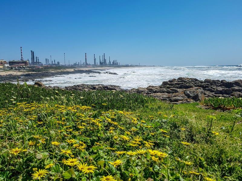 Paisagem industrial com as chaminés da fábrica da planta e paisagem bonita da natureza da mola, Portugal, Europa fotografia de stock royalty free