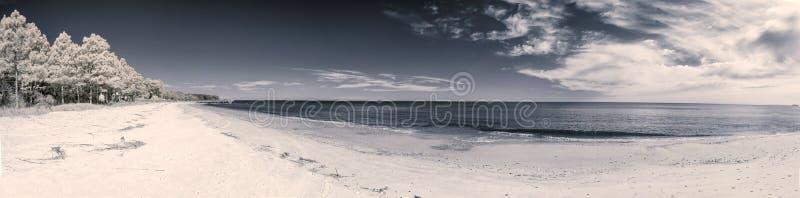 Paisagem infravermelha da praia fotografia de stock