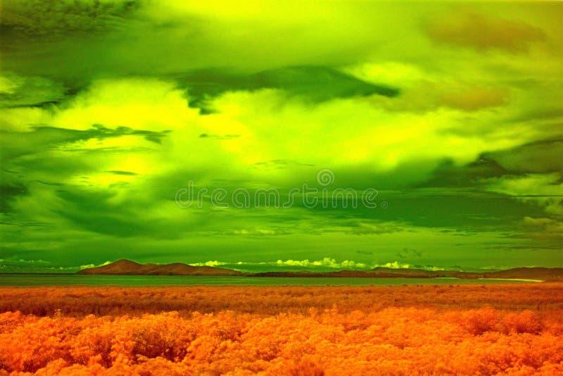 Paisagem infravermelha de Hawke Australia do cabo imagem de stock royalty free