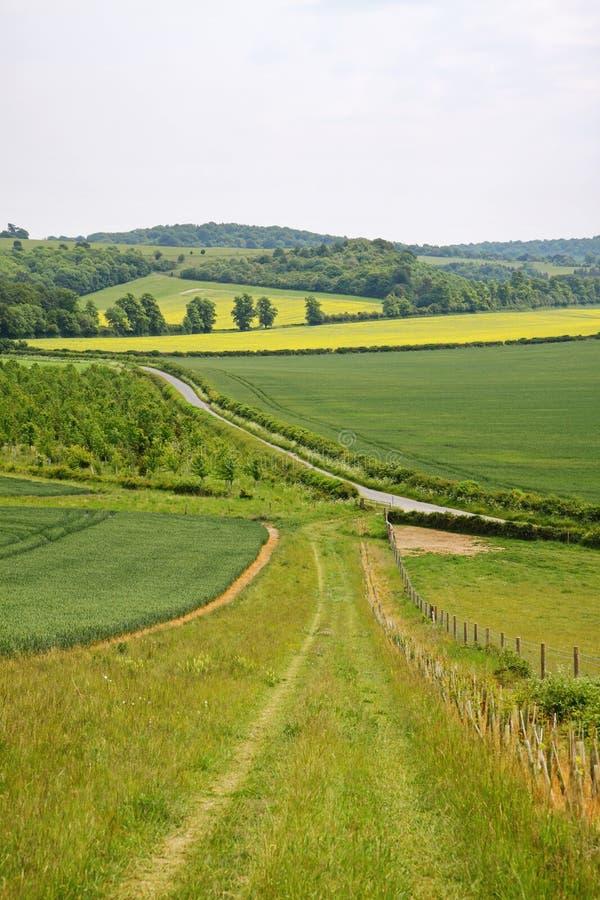 Paisagem Inglesa Com Trilha De Exploração Agrícola Imagem de Stock Royalty Free
