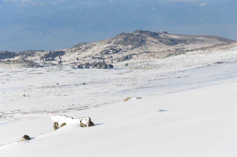 Paisagem invernal sem nuvens imagem de stock