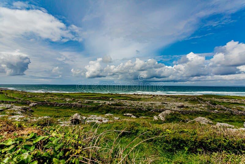 Paisagem irlandesa da costa com as rochas da pedra calcária com grama fotos de stock royalty free