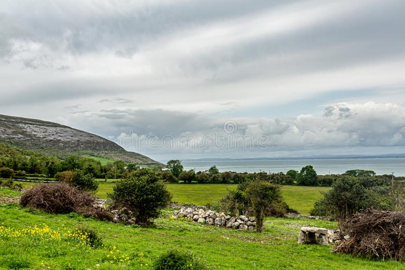 Paisagem irlandesa dos prados e das explorações agrícolas com o mar no fundo foto de stock