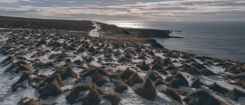 Paisagem islandêsa Grimsey imagem de stock royalty free