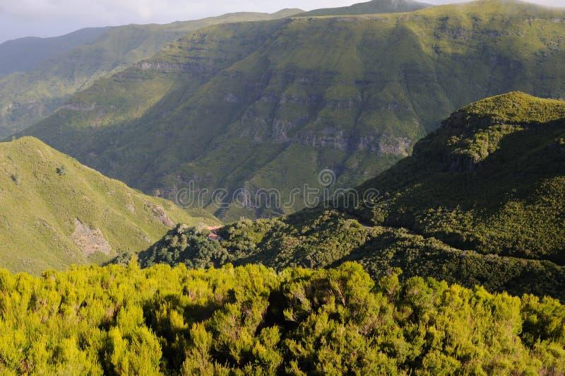 Paisagem Madeira fotografia de stock
