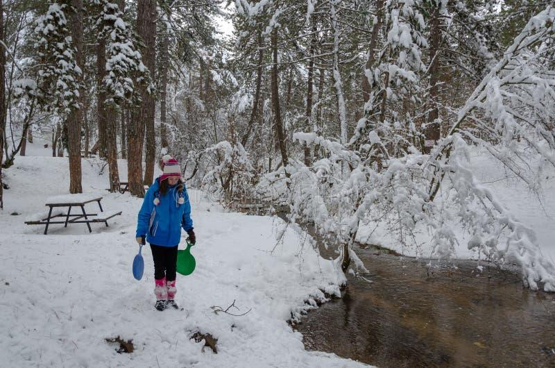 Paisagem maravilhosa do inverno The Creek e as árvores são cobertos com a neve imagens de stock