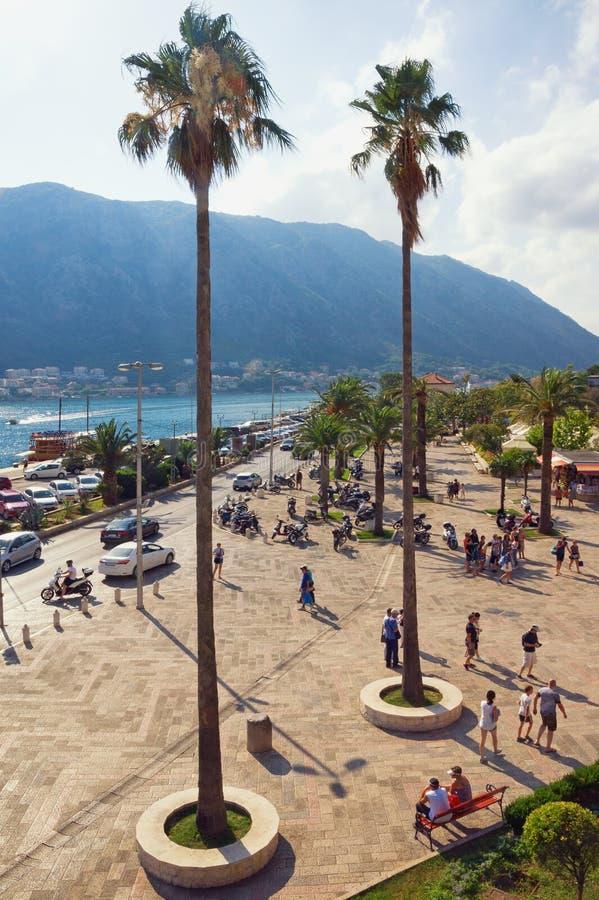 Paisagem mediterrânea do verão Montenegro, baía de Kotor, cidade de Kotor imagens de stock royalty free
