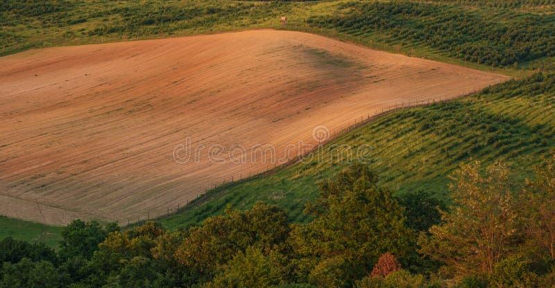 Paisagem montanhosa bonita, campo - vista superior imagem de stock royalty free