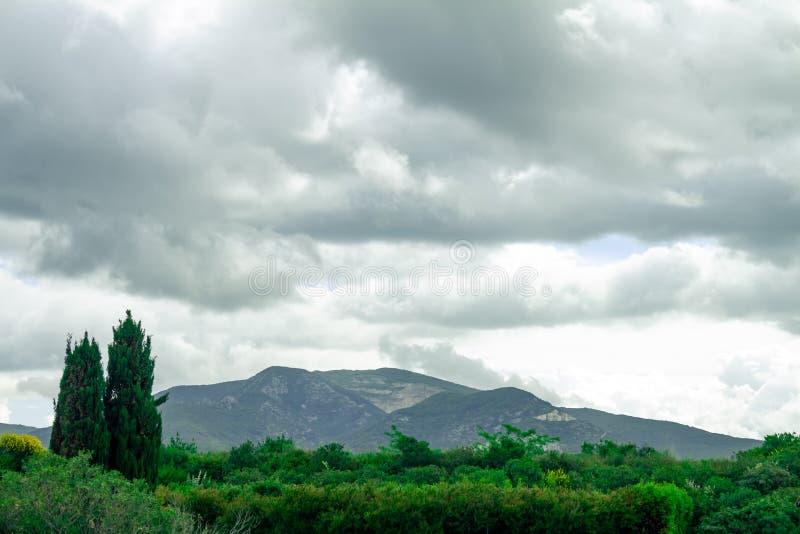 Paisagem montanhosa do italiano Tuscan Montes semeados com videiras imagens de stock royalty free