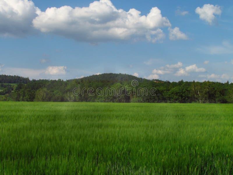 Paisagem montanhosa do país do verão com o prado verde bonito, os campos, as tentativas e as nuvens dramáticas no céu foto de stock