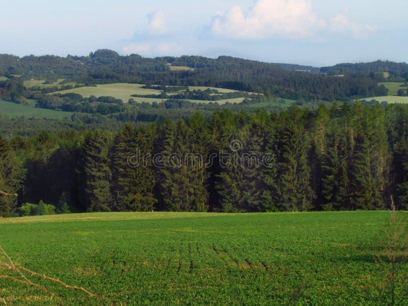 Paisagem montanhosa rural do verão com prado verde, floresta, república checa fotos de stock