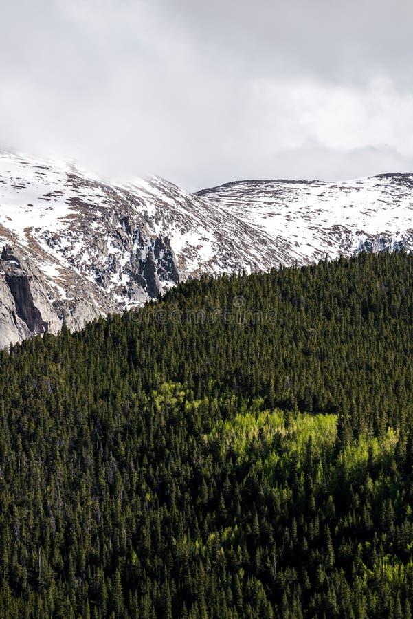 Paisagem mt Evans Colorado da montanha fotos de stock royalty free