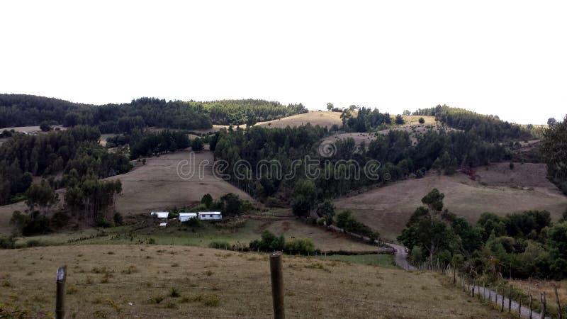 Paisagem na cidade de Carahue - o Chile fotos de stock