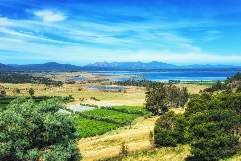 Paisagem na costa leste, Tasmânia imagem de stock