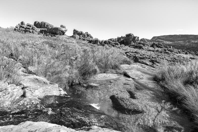 Paisagem na fuga de caminhada do arco do beira-rio perto de Clanwilliam monocromático foto de stock
