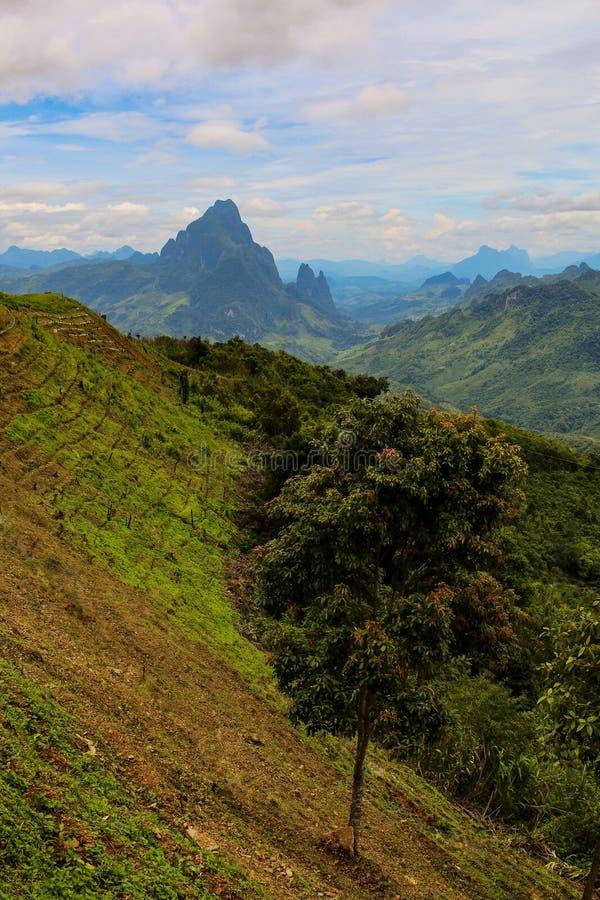 Paisagem nas montanhas em Laos imagem de stock royalty free