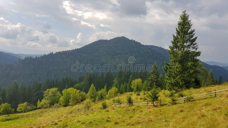 Paisagem natural bonita em montanhas e em campos verdes fotografia de stock
