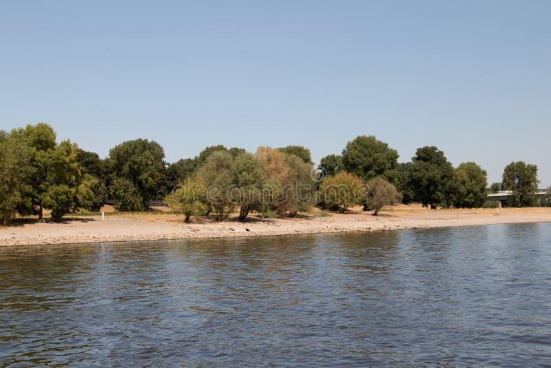 Paisagem natural com árvores e praia no Rhine River na água de Colônia Alemanha fotos de stock royalty free