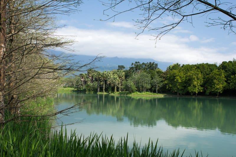 Paisagem natural com lago e árvores fotografia de stock