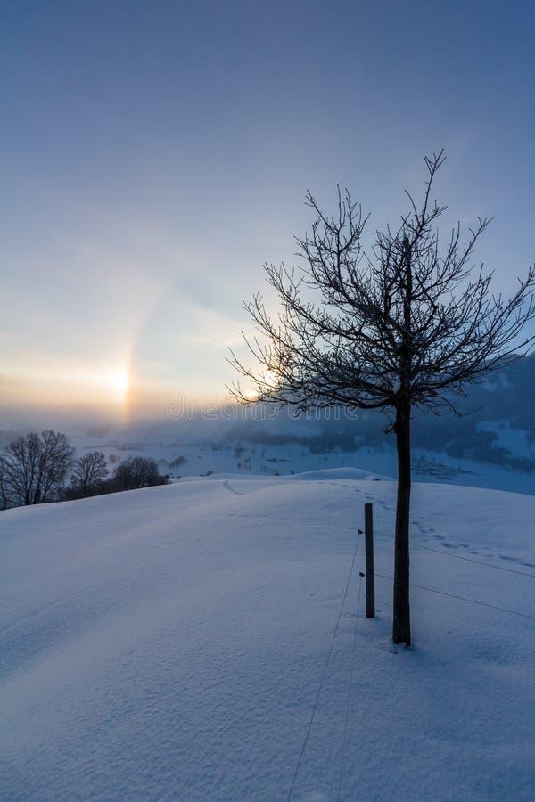 Paisagem nevado nos cumes, nascer do sol do inverno com fenômenos do halo fotografia de stock royalty free