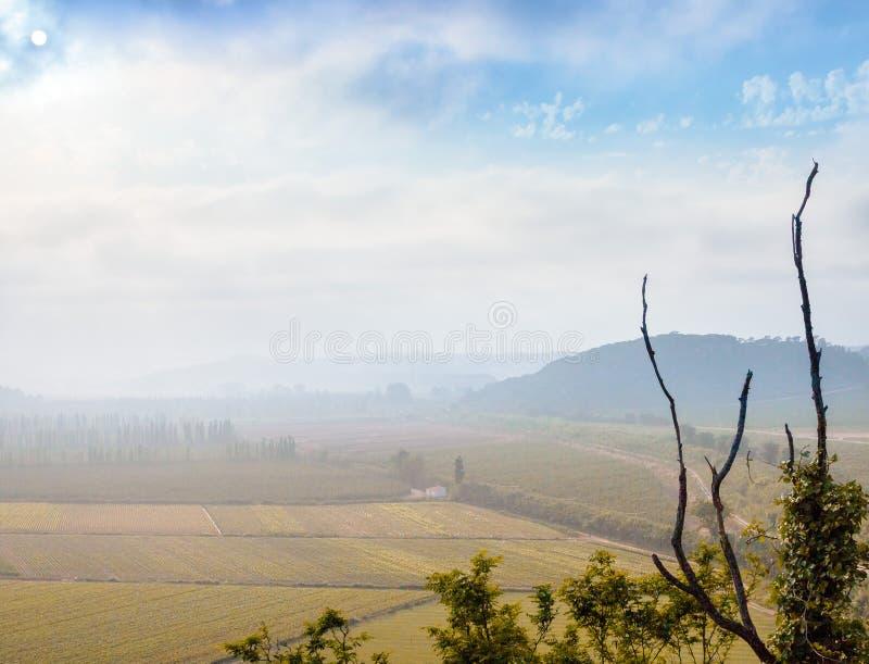 Paisagem nevoenta aérea com campos cultivados e os membros inoperantes imagem de stock