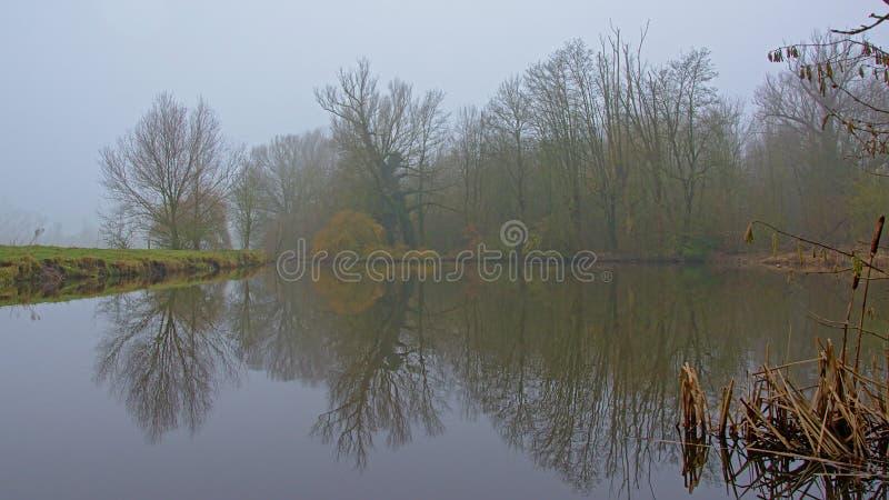 Paisagem nevoenta da região pantanosa com as árvores desencapadas que refletem na água fotografia de stock royalty free