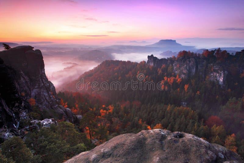 Paisagem nevoenta do outono ou do verão Manhã nevoenta enevoada com nascer do sol em um vale do parque boêmio de Suíça Detalhe de fotografia de stock royalty free