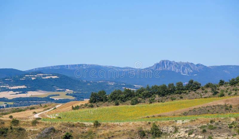 Paisagem no país Basque, Espanha imagens de stock royalty free