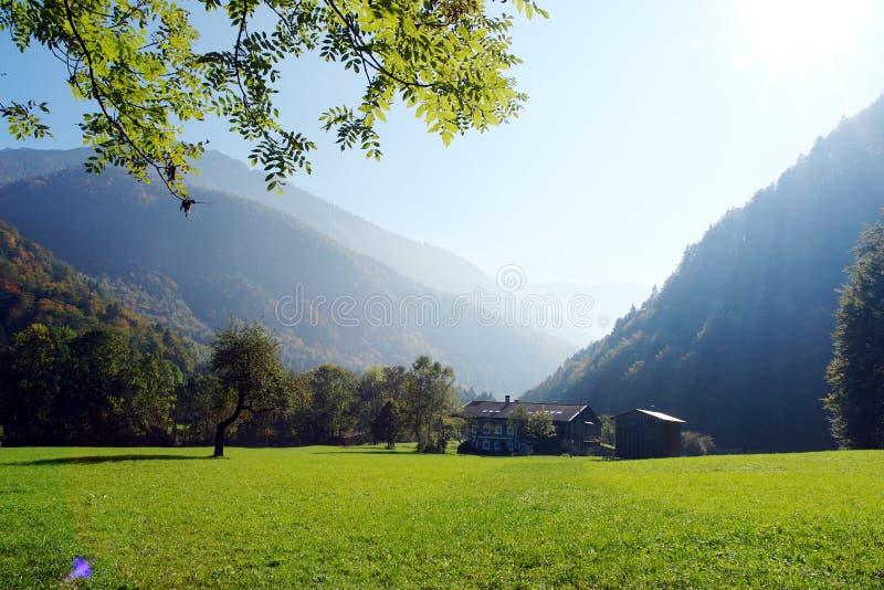 Paisagem nos alpes (Baviera) imagem de stock