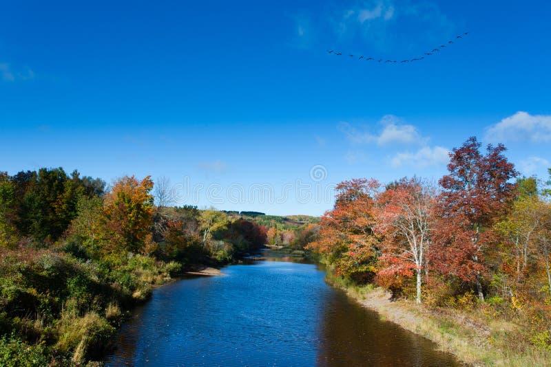 Paisagem Nova Scotia NS Canadá da queda de Pictou East River imagens de stock