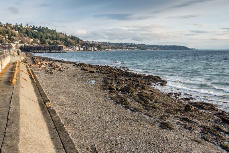 Paisagem ocidental da costa de Seattle imagens de stock royalty free