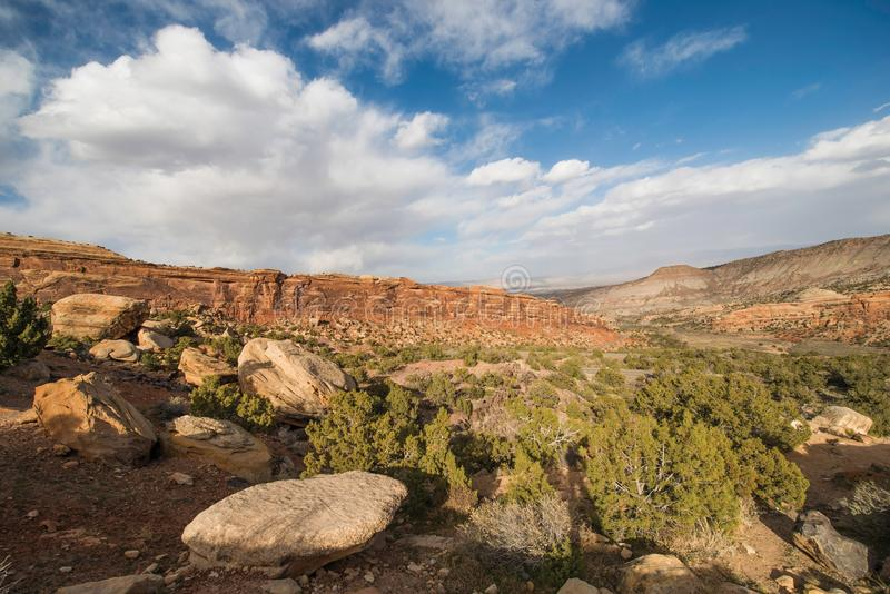 Paisagem ocidental de Colorado imagem de stock royalty free