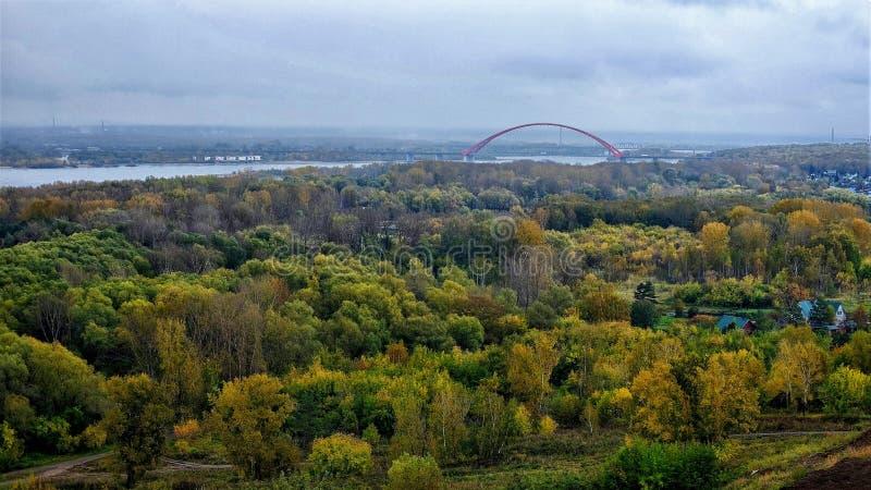 Paisagem ocidental do outono de Sibéria fotos de stock